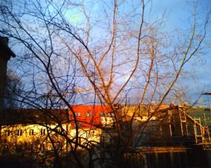 Sonne und Rascheln Bilde